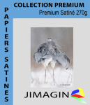 Papier photo premium satiné 270g/m² HW  A4 x 50f